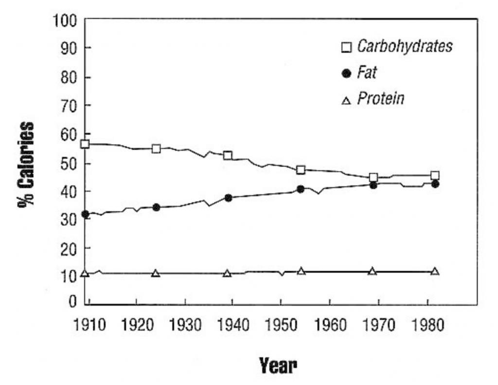 dietary intake chart