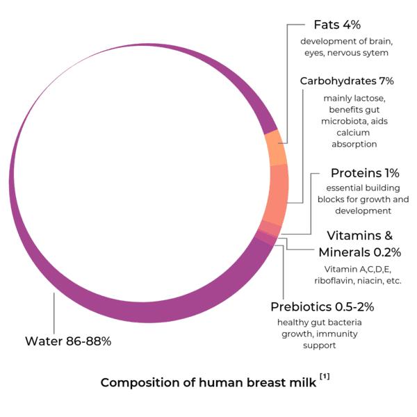 human breast milk composition